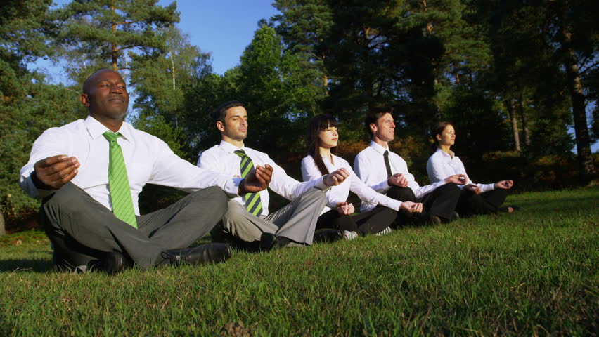 Business team meditating with Yoga positions. Corporate businessmen and businesswomen surrounded by summer trees and grass. Corporate responsibility concept. - HD stock video clip