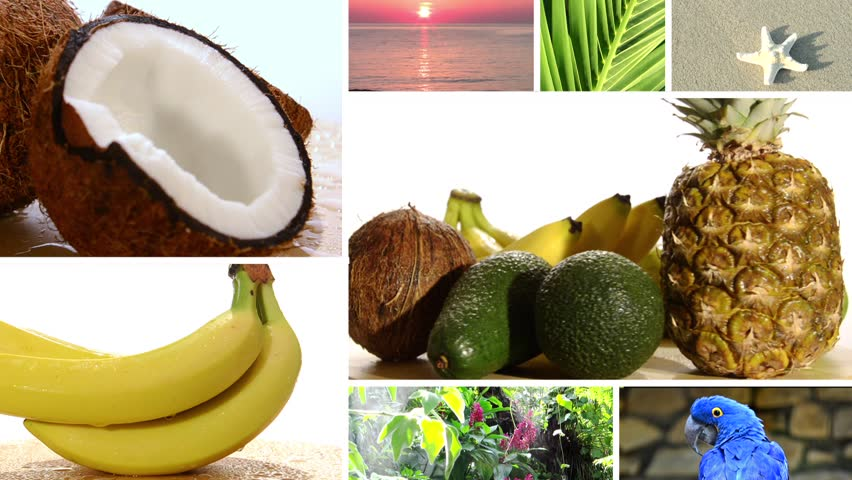 tropical fruits composition  - HD stock footage clip