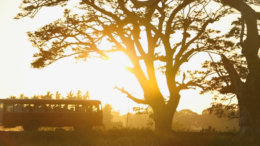 Old bus travels along dusty road at sunset, slow motion