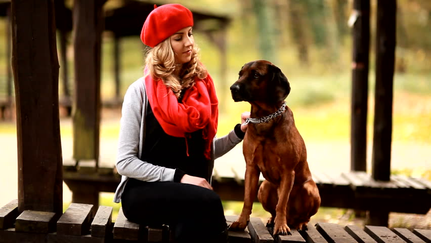 Pretty woman with dog in park - HD stock video clip