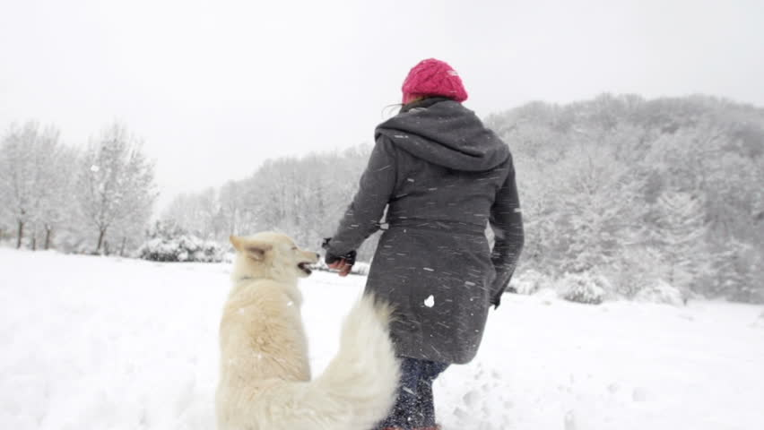 Spectacular Slow Motion Rear View Of White Swiss Shepherd Dog Running With Its Owner Through Fresh Snow