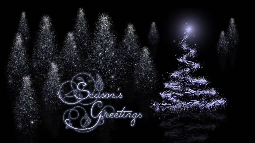 Seasons Greetings Reflective Trees - This video is an elegant holiday greeting with particle Christmas trees appear to rise out of black reflective surface with a seasons greeting animated message