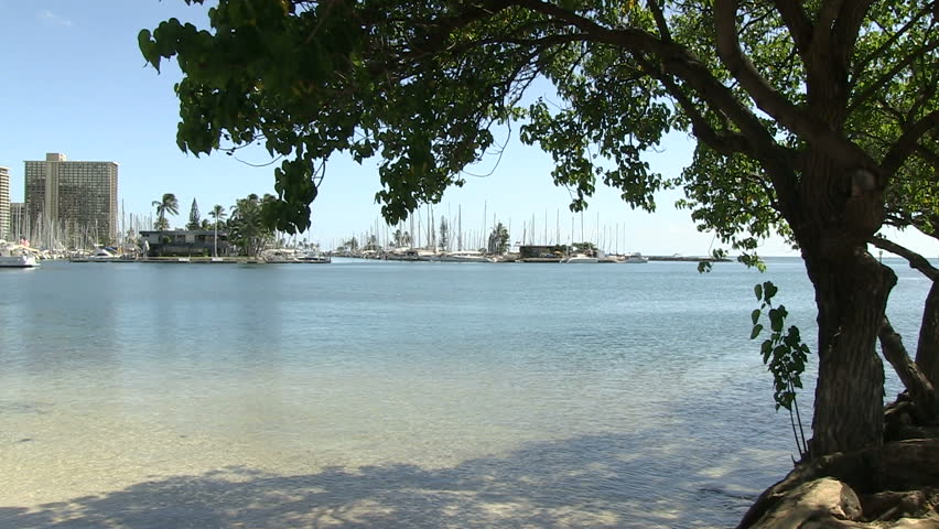 Oahu Hawaii United States  city photos gallery : Waikiki, Oahu, Hawaii, United States Stock Footage Video 5548034 ...