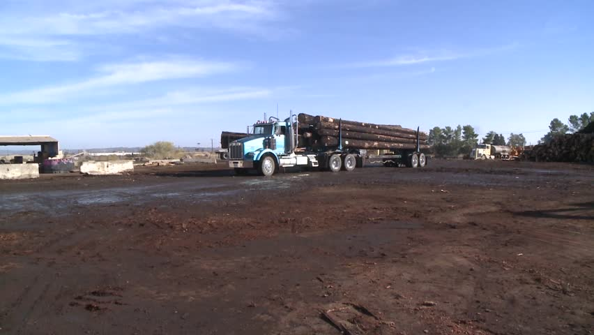 LOG PICKER DOZER AT LUMBER MILL LOGGING LOADING TREES WITH HEAVY EQUIPMENT ON TO BIG RIG SEMI HAULER  HD HIGH DEFINITION STOCK VIDEO FOOTAGE 1080 1920X1080 - HD stock video clip