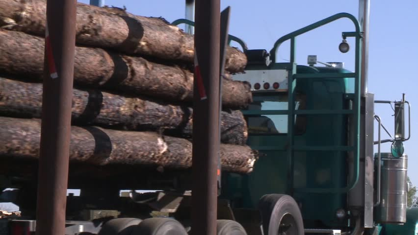 LOGGING TRUCK AT LUMBER MILL LOADED WITH LOGS AND TREES WITH HEAVY EQUIPMENT HD HIGH DEFINITION STOCK VIDEO FOOTAGE 1080 1920X1080 - HD stock footage clip