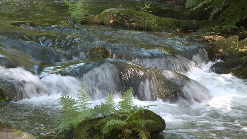 Beautiful small waterfall in forest   Shutterstock HD Video #581839