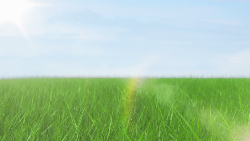 Green field and sky blue with white cloud. 1080 Seamless loop - HD stock footage clip