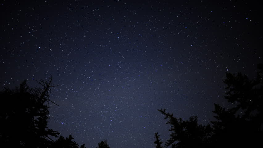 Time Lapse of Starry Sky over Alpine Forest -Tilt Down-