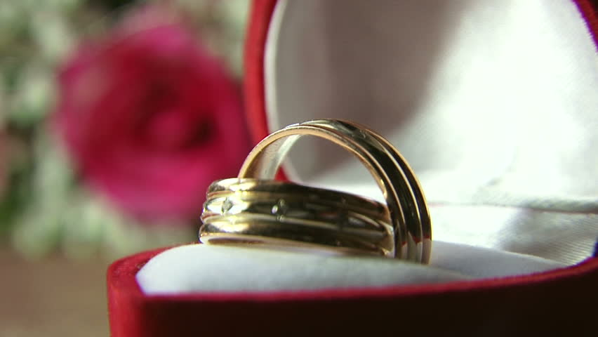 Rings Wedding rings in the case. - HD stock footage clip