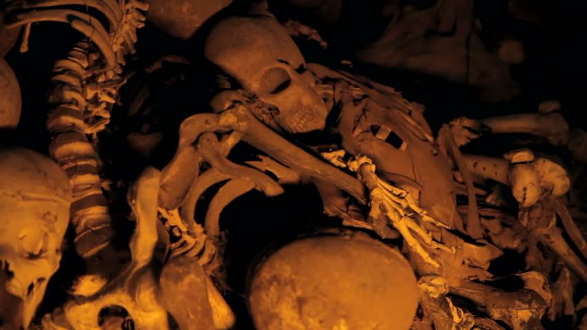 Skeleton Pile Revealed from Shadows