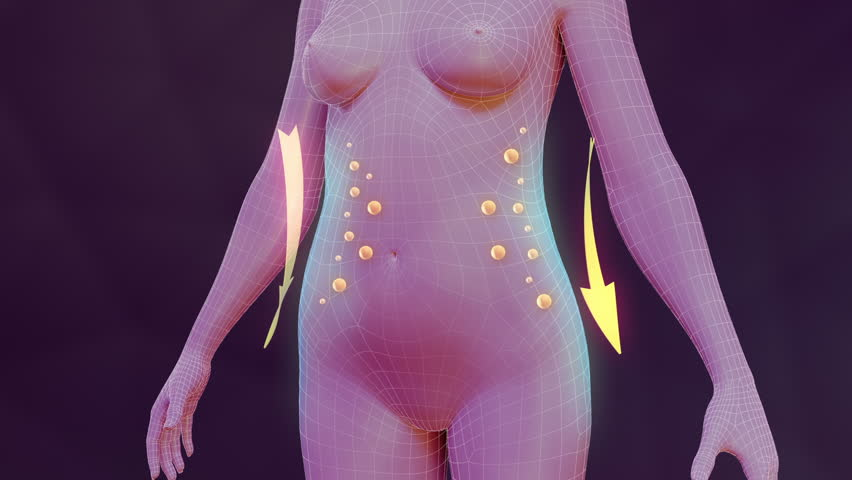 Body slimming animation. Three high quality animation showing the process of weight loss and vanishing of body fat. Best for you commercial movie, video presentation and other production.