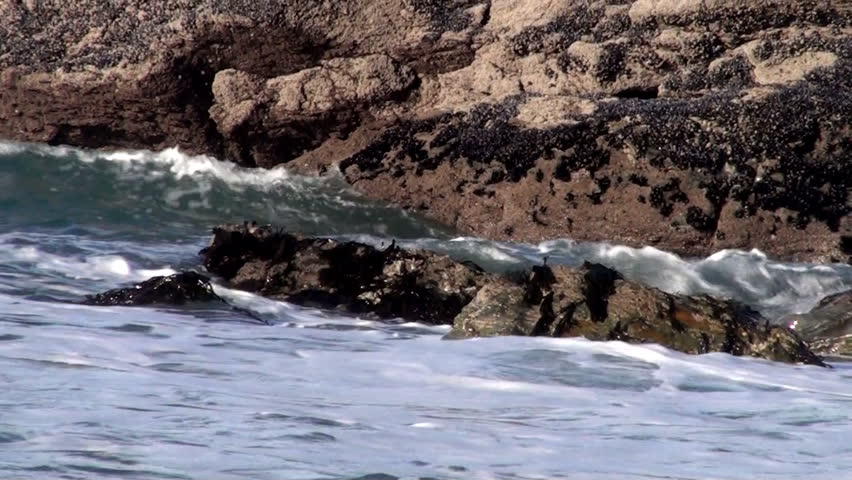 Ocean Waves in Cornwall, England - HD stock video clip