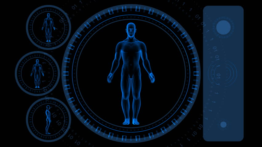Man Scan Screen - Hi-tech 08 (HD) - 3D animation. Medical, scientific, sci-fi, crime or hi-tech background. Screen with spinning man body and rings. Alpha included. Loop. - HD stock video clip