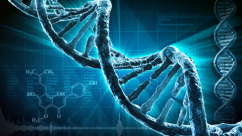 DNA strand - HD stock footage clip