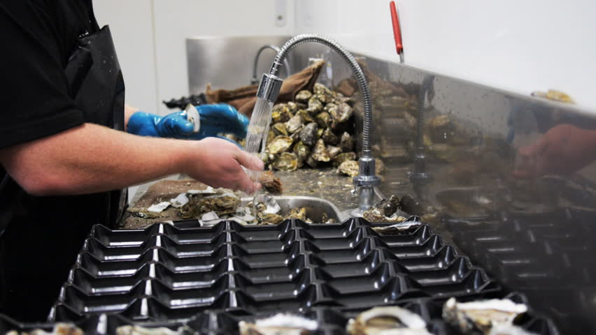 a worker at a fish processing factory removes oysters from their shells