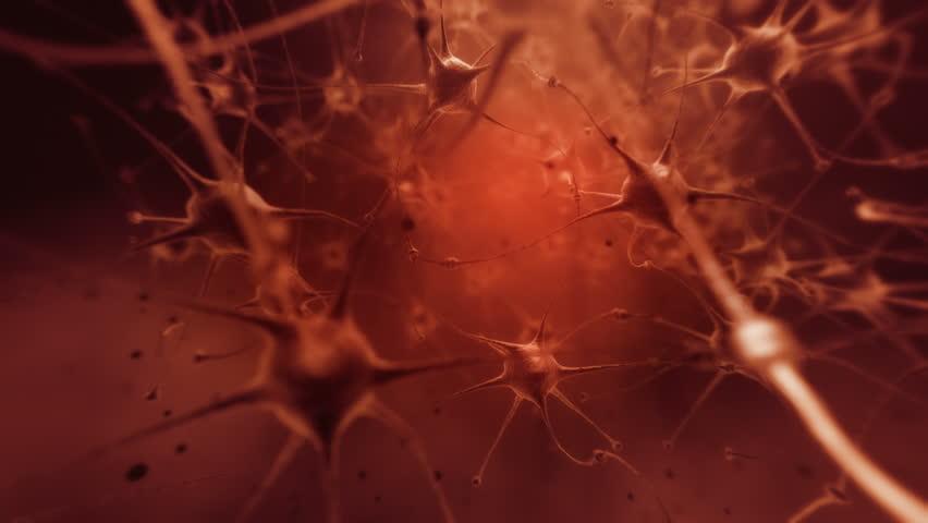 4K. Flight through human neural network. DOF