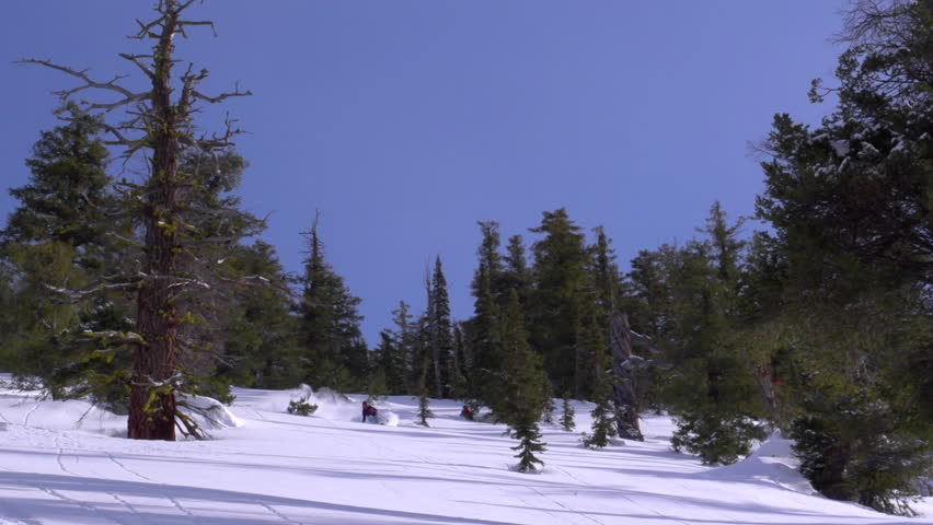 Washington, Utah, Alaska, Oregon, Wyoming, 2012. A skier ski's down the mountain on a fine winter day, mountain surrounded by trees