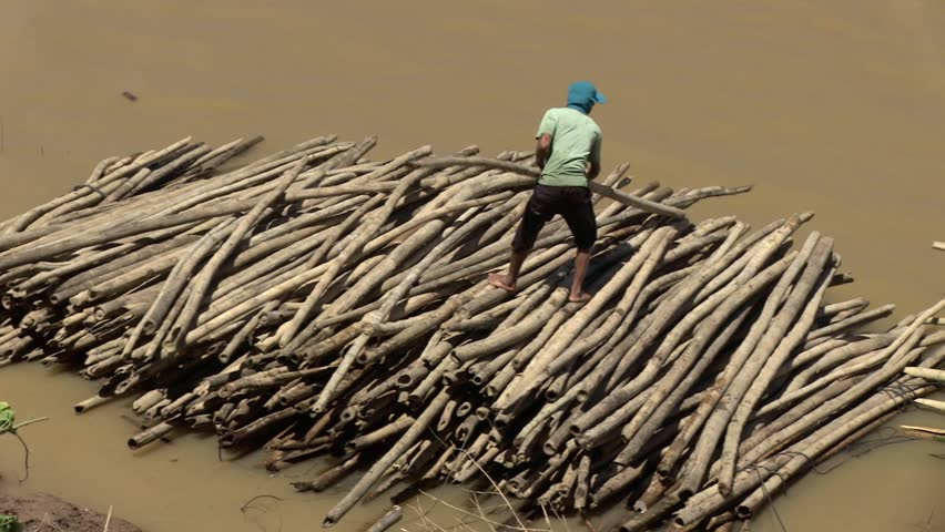 Southeast asia, Cambodia, mekong, october 2012.   One worker  build  a  bamboo raft