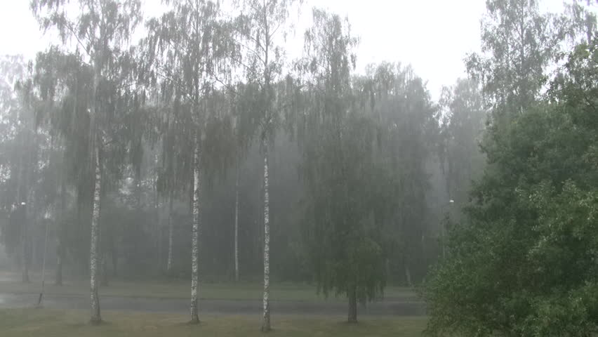 Heavy rainfall during an extreme thunderstorm in Sweden