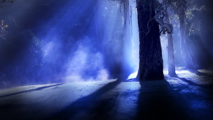 Misty forest. Steam rises from frost amongst silhouetted trees, illuminated by sun rays, blue version. This shot could also be used for a dark spooky night time horror scene of moonlight in a forest. | Shutterstock HD Video #6963982