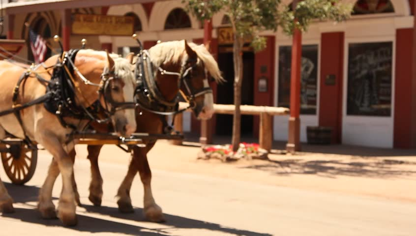 Horses Pulling Cowboy Western Stagecoach - HD stock video clip
