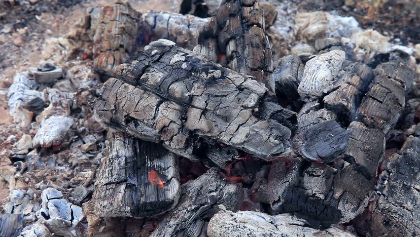 HD close-up background of burning fire wood - HD stock video clip