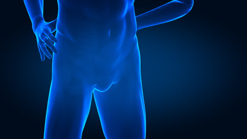 Pain in human hip bones concept - similar footage in my portfolio - HD stock footage clip