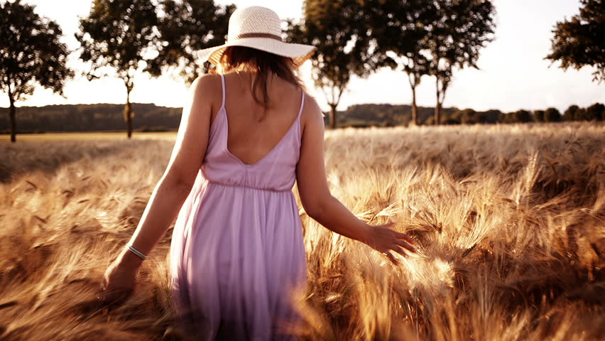 Woman walking through wheat field and touching wheat - HD stock footage clip