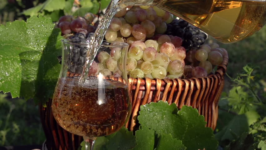 Wine Jugs Stock Footage video 1657114 - Shutterstock