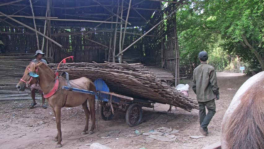 Southeast asia, Cambodia, mekong, november 2013. Horse cart  loaded with some bamboo floors