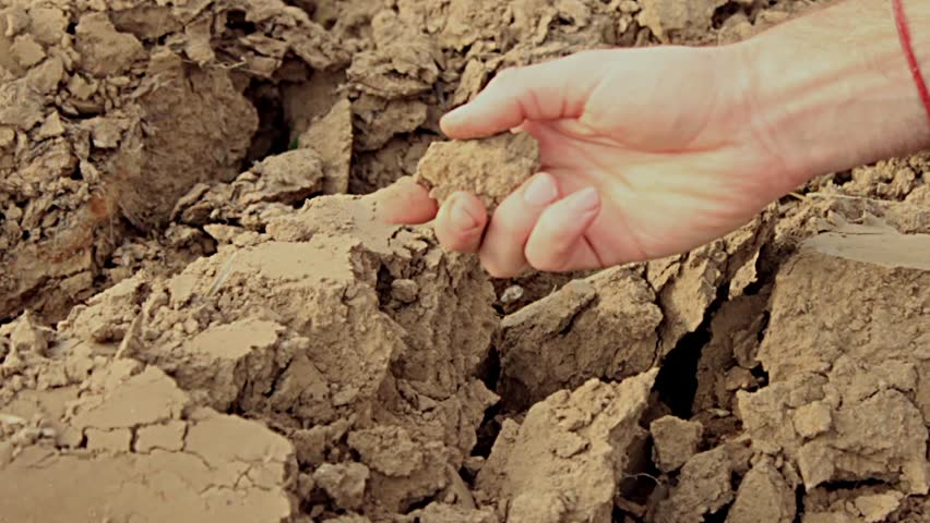 Mans hand checks on poor soil stock footage video 7346536 for Quality topsoil