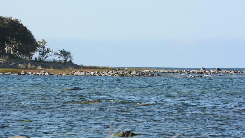 Coastline on the island of Gotland in Sweden - HD stock footage clip