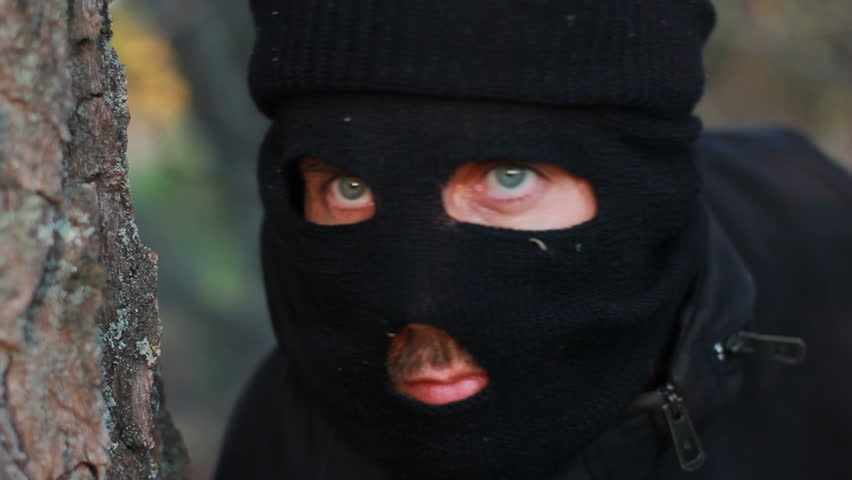 Image result for masked criminal