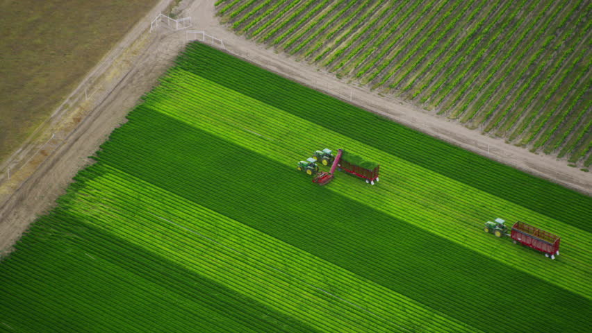 CALIFORNIA JULY 2014 - Aerial shot of workers and tractors in fields with various types of agriculture. California farming. CALIFORNIA, USA 1 JULY 2014 EDITORIAL