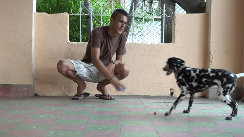 Young Cuban man playing with his Dalmatian pet dog. An inexpensive way to relax and pass time.