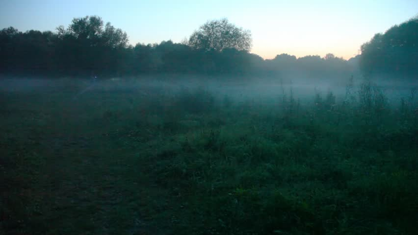 man with electric torch rides bicycle in summer misty night forest