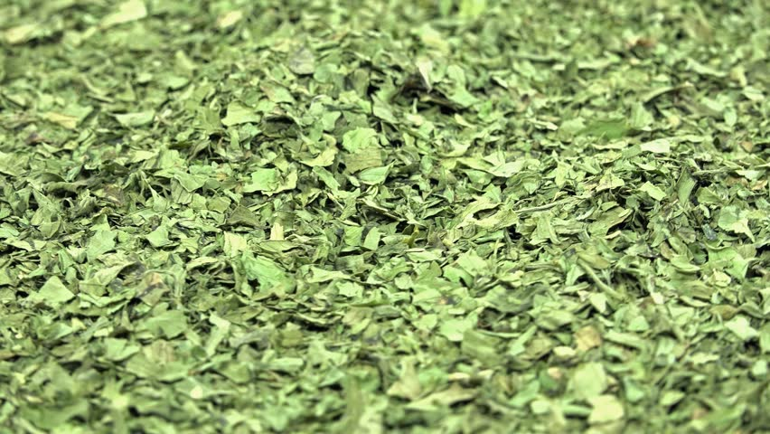 Dried Lovage background footage (loopable)