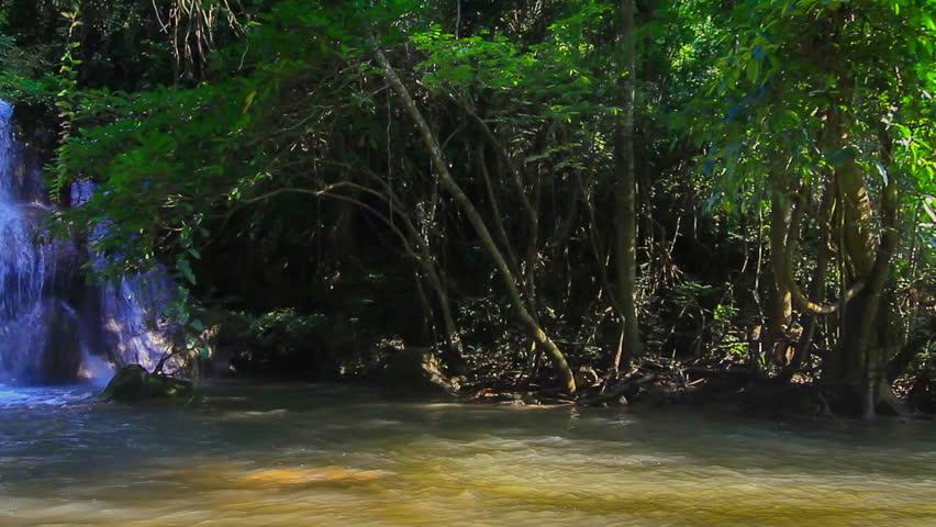 Waterfalls Videos hd hd Waterfalls in Deep Forest