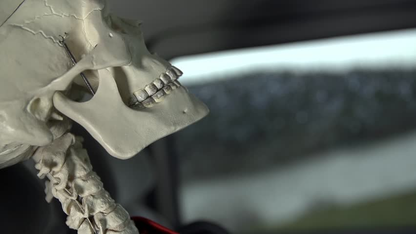 Close up on face of skeleton in driving car. Dead boned skeleton looking through car window - HD stock video clip