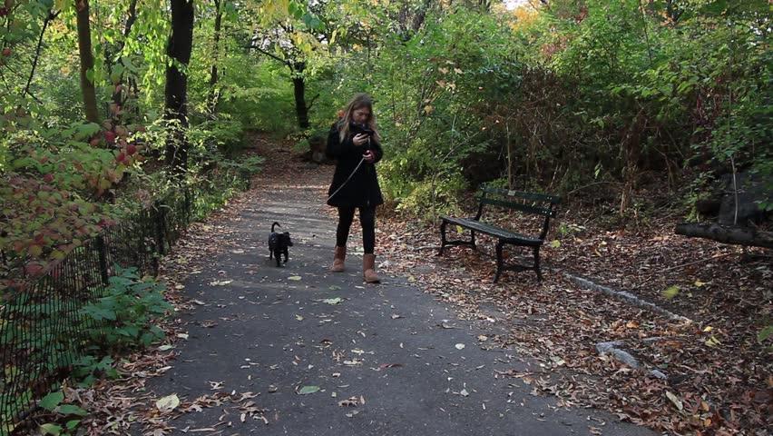 New York - Circa 2014: Central Park in 2014. Woman walking her dog on a alley of Central Park, New York City, New York.