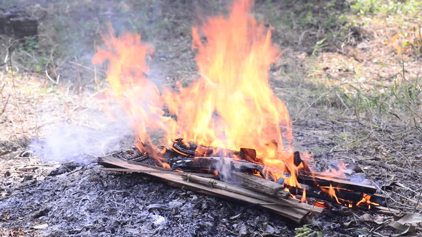 Burn fire with wood and legs | Shutterstock HD Video #8433925