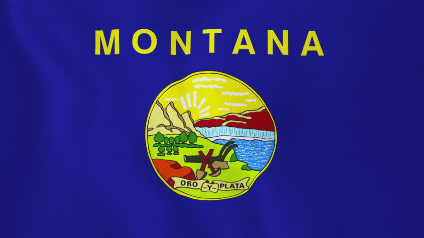 [loopable] Montana flag. Flag of state Montana waving in the wind. Seamless loop. Made from ultra high-definition original with detailed fabric texture. Source: CGI rendering. Clip ID: ax352c - 4K stock video clip