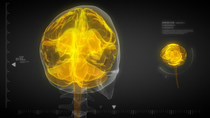human brain energy 3d animation - HD stock footage clip