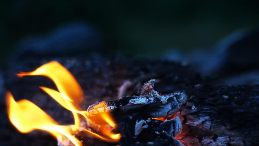Bonfire In Wilderness At Evening. Rack Focus Shot. Stock Footage ...