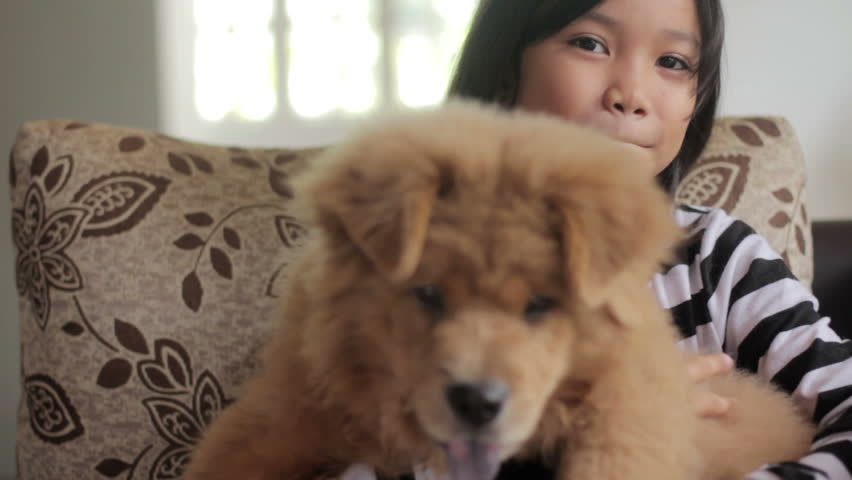 Happy little asian girl playing with her pet dog - HD stock footage clip
