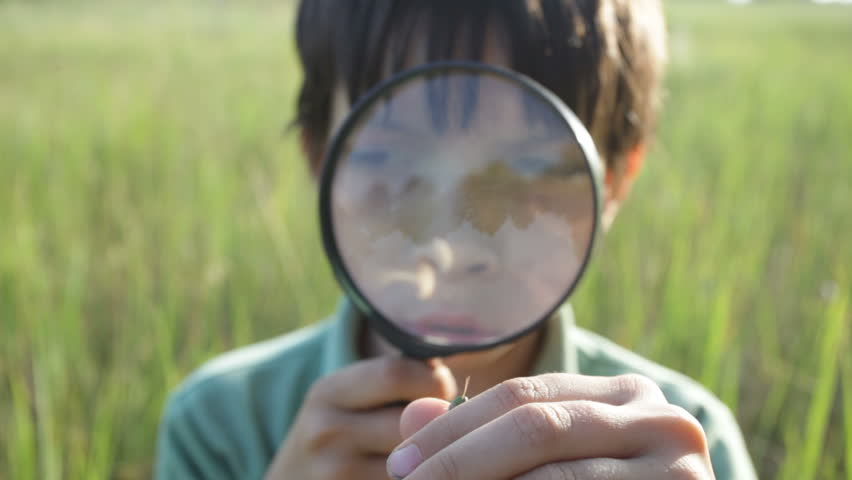 The boy with a magnifier - HD stock footage clip