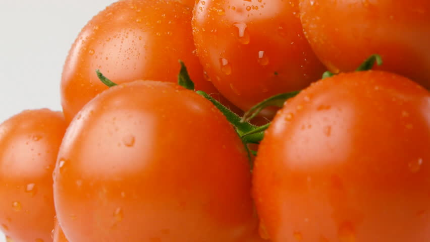 cherry tomatoes branches with water drops close up - HD stock video clip