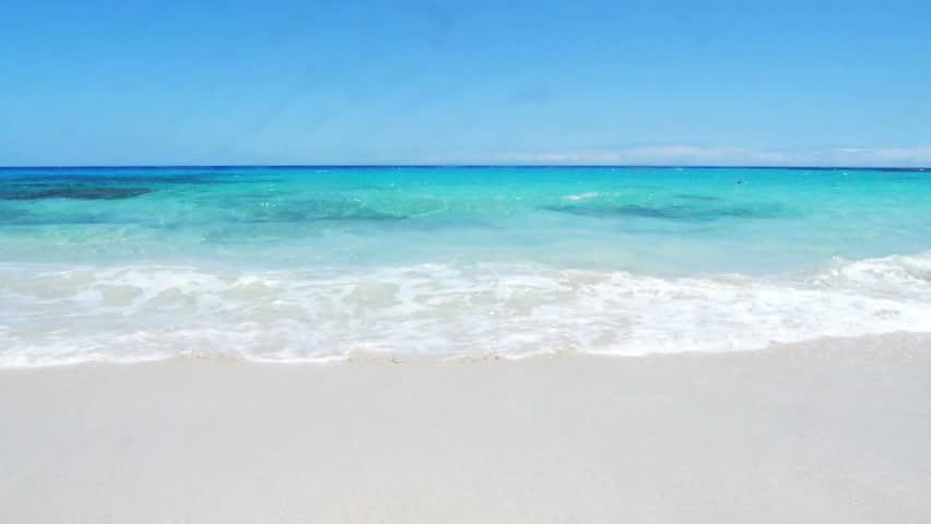 Footage of tropical beach in Big Island, Hawaii