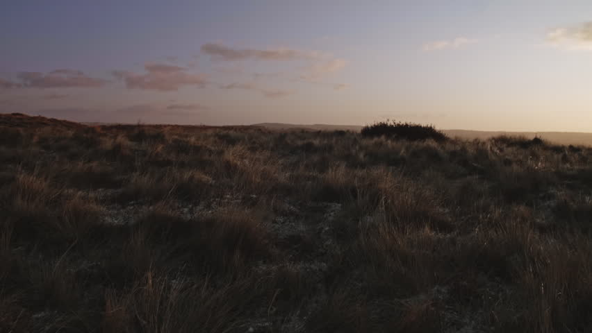 Bleak Moorland scene HD stock footage. A Autumn/Fall seasonal scene of an English Moorland with low Sunlight. ProRes 422.