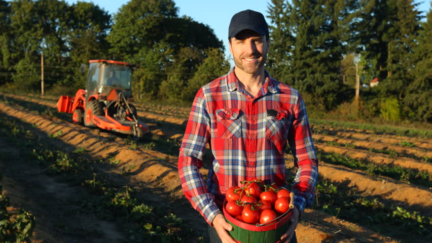 Portrait of farmer with basket of tomatoes